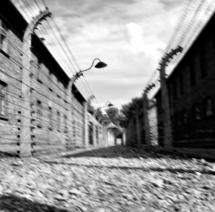 audiovisual aushwitz 11