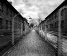 audiovisual aushwitz 14