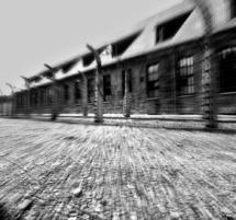 audiovisual aushwitz 9